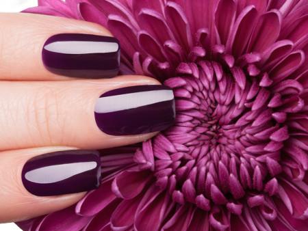 Manicure + Shellac handen